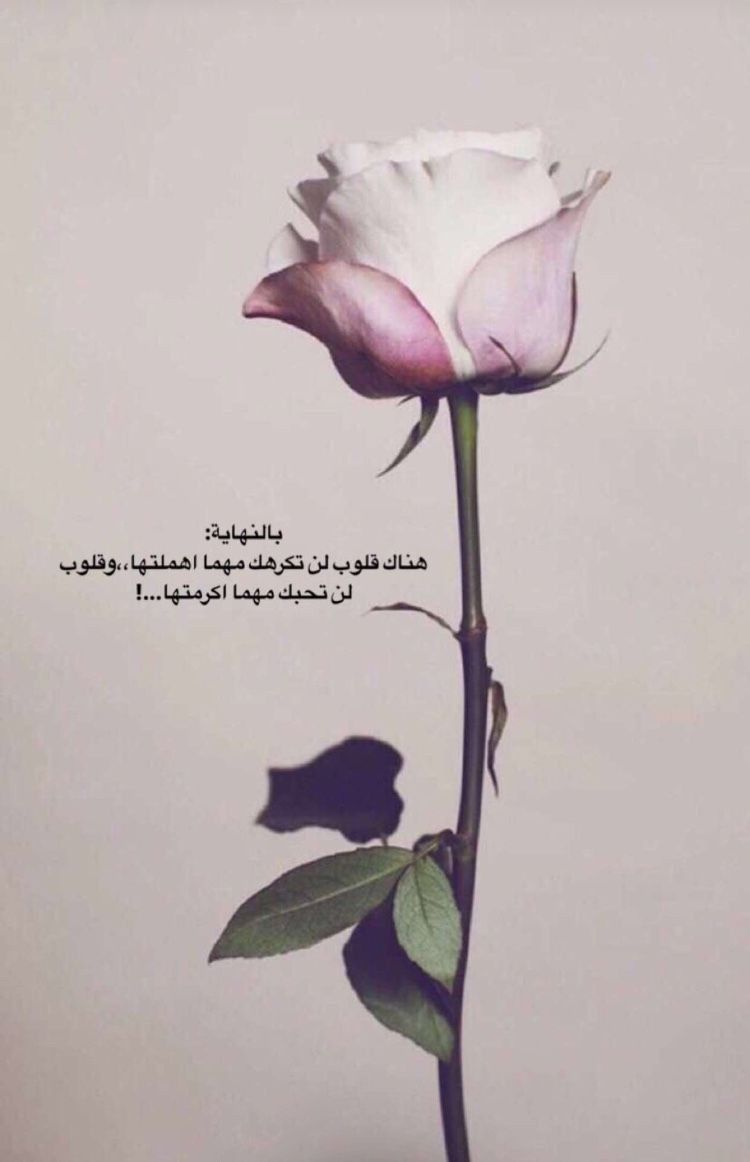 نسائم الحب Arabic Quotes Arabic Tattoo Quotes Beautiful Arabic Words