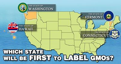 A call for GMO Labelling