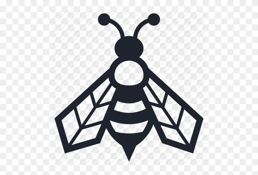 Beekeeper Beekeeping Farming Insects Mother Queen Icon Queen Bee Png Bee Artwork Bee Art Bee Clipart