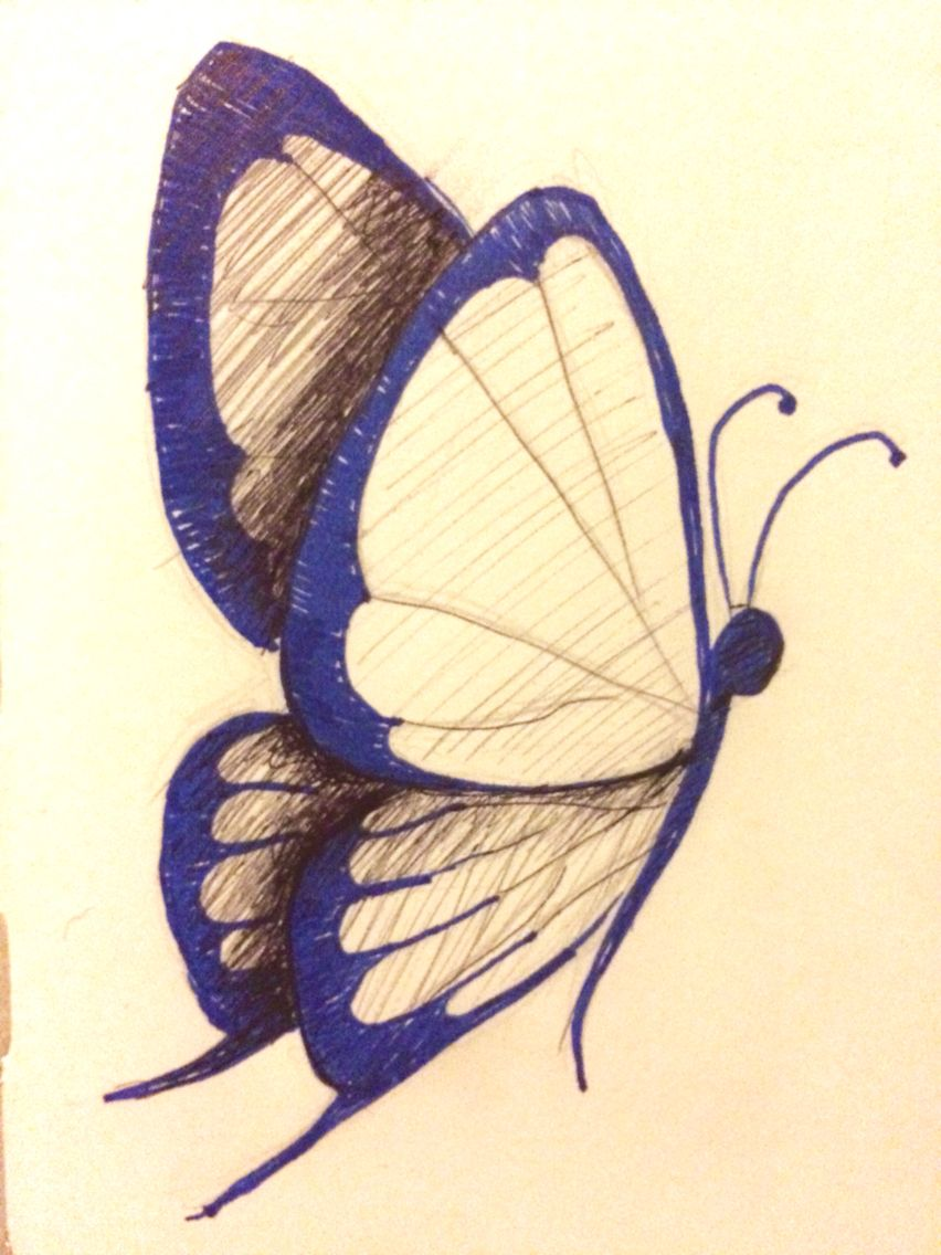 Day 13: Something in Nature #penandink #drawing #butterfly ...