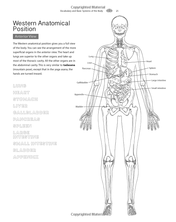 The Yoga Anatomy Coloring Book: A Visual Guide to Form