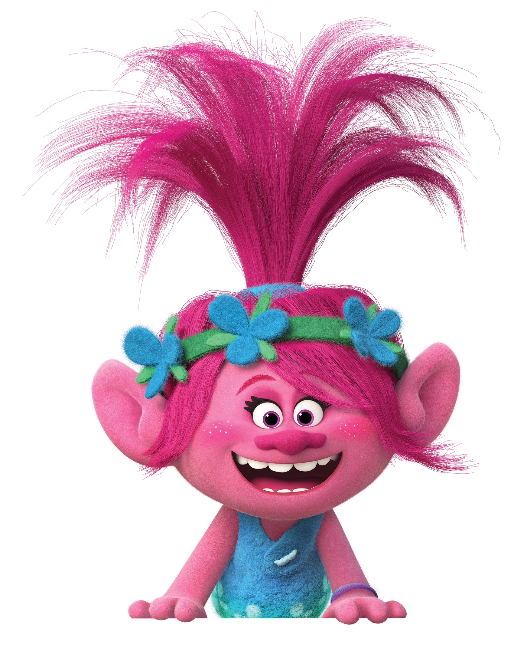 Characters of dreamworks d dreamworks animation photo pictures to pin - Www Fhetoolkits Com Trolls Catalog Attach Downloads Celebrate Trolls Trolls