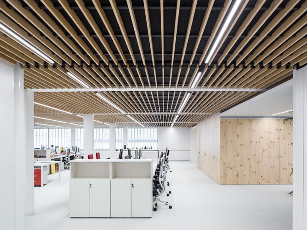 Falso Techo De Lamas De Madera Oficinas De Finsa Spigogroup False Ceiling Wood Slats Acoustic Ceiling Panels
