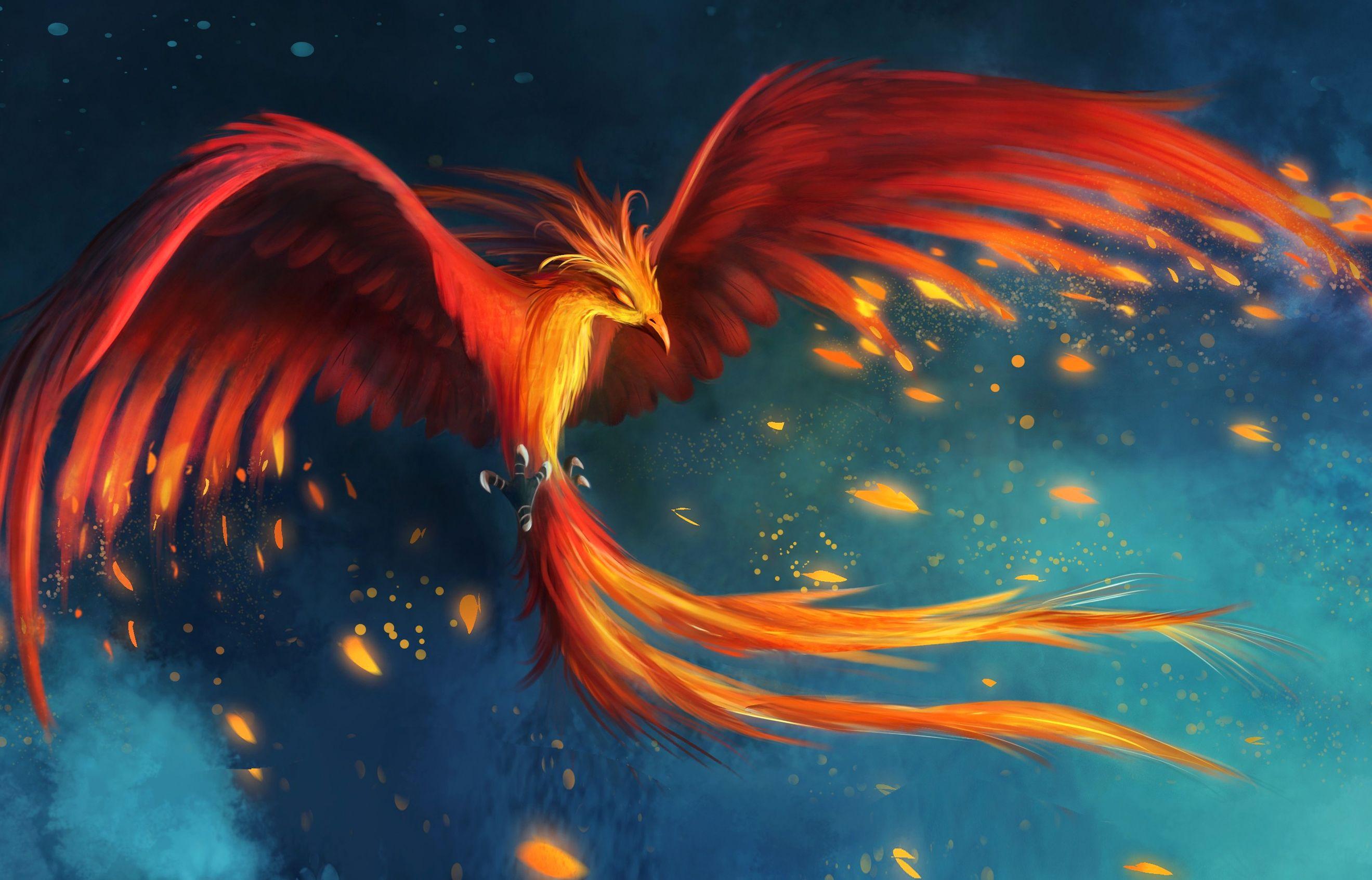 Real Phoenix Bird Hd Wallpaper Download