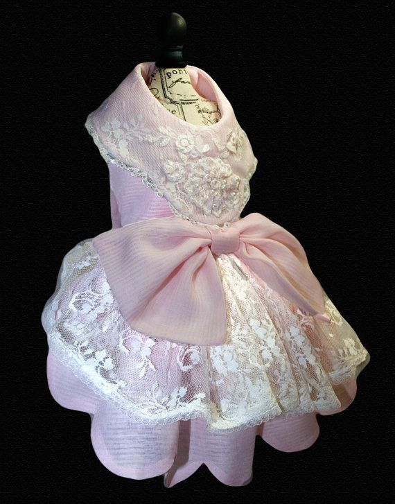 Victoria Delicate Couture Dog Dress Scalloped by tinypawscouture, $79.00