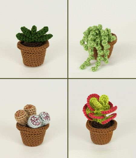 PDF Succulent Collections 1 And 2, Eight Realistic Potted