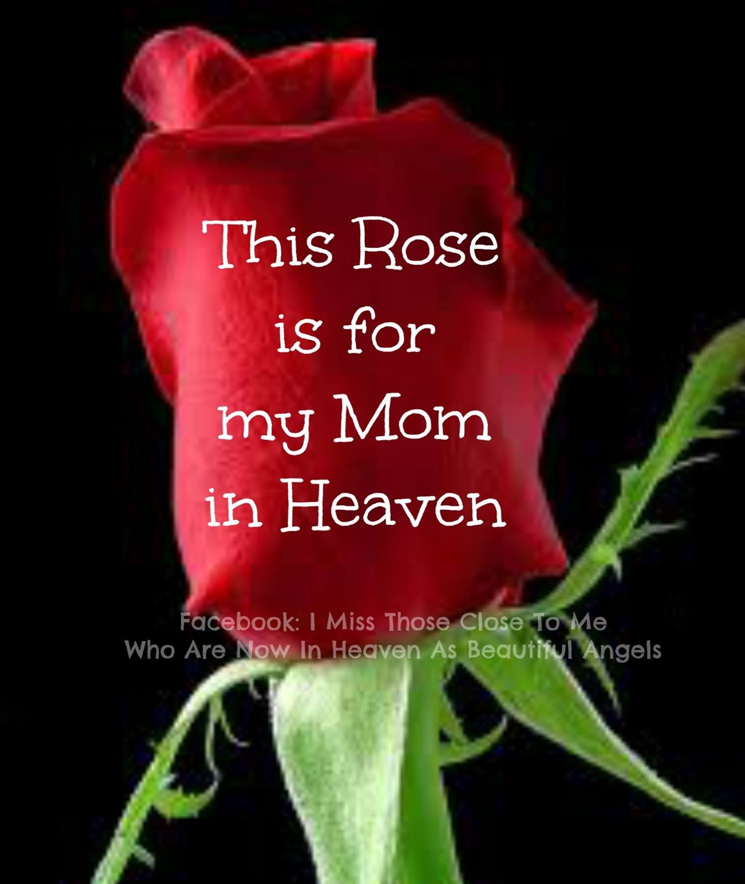 Pin by Kami Smith on Mom Birthday in heaven, Birthday