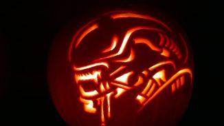 xenomorph pumpkin stencil  Xenomorph   Pumpkin carving, Halloween decorations, Pumkin ...