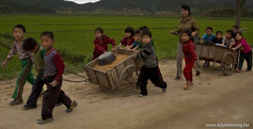 Észak-Korea - Katt ide és oszd meg másokkal is!