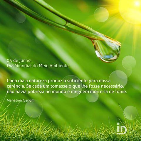 5 De Junho Dia Mundial Do Meio Ambiente Frases Posts Interage