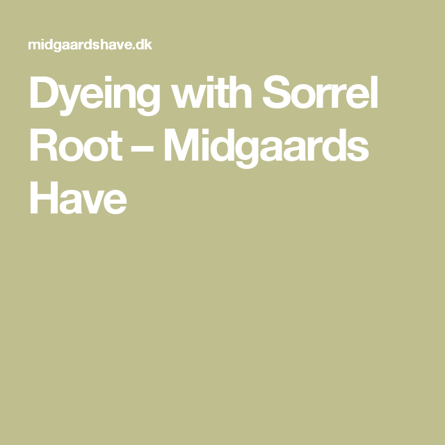 Dyeing with Sorrel Root – Midgaards Have