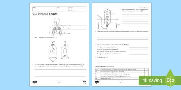 Ks3 Gas Exchange Homework Worksheet Science Teaching Resources Homework Worksheets Homework Activities