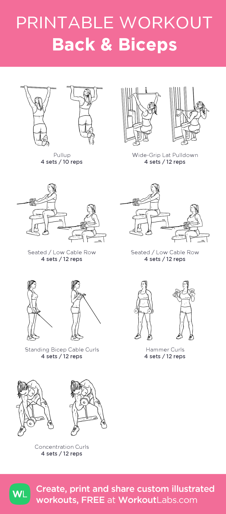 Back Amp Biceps My Custom Printable Workout By Workoutlabs