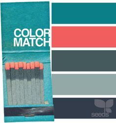 Dark Grey Teal And Coral Design Seeds Coral Color Schemes Bedroom Color Schemes