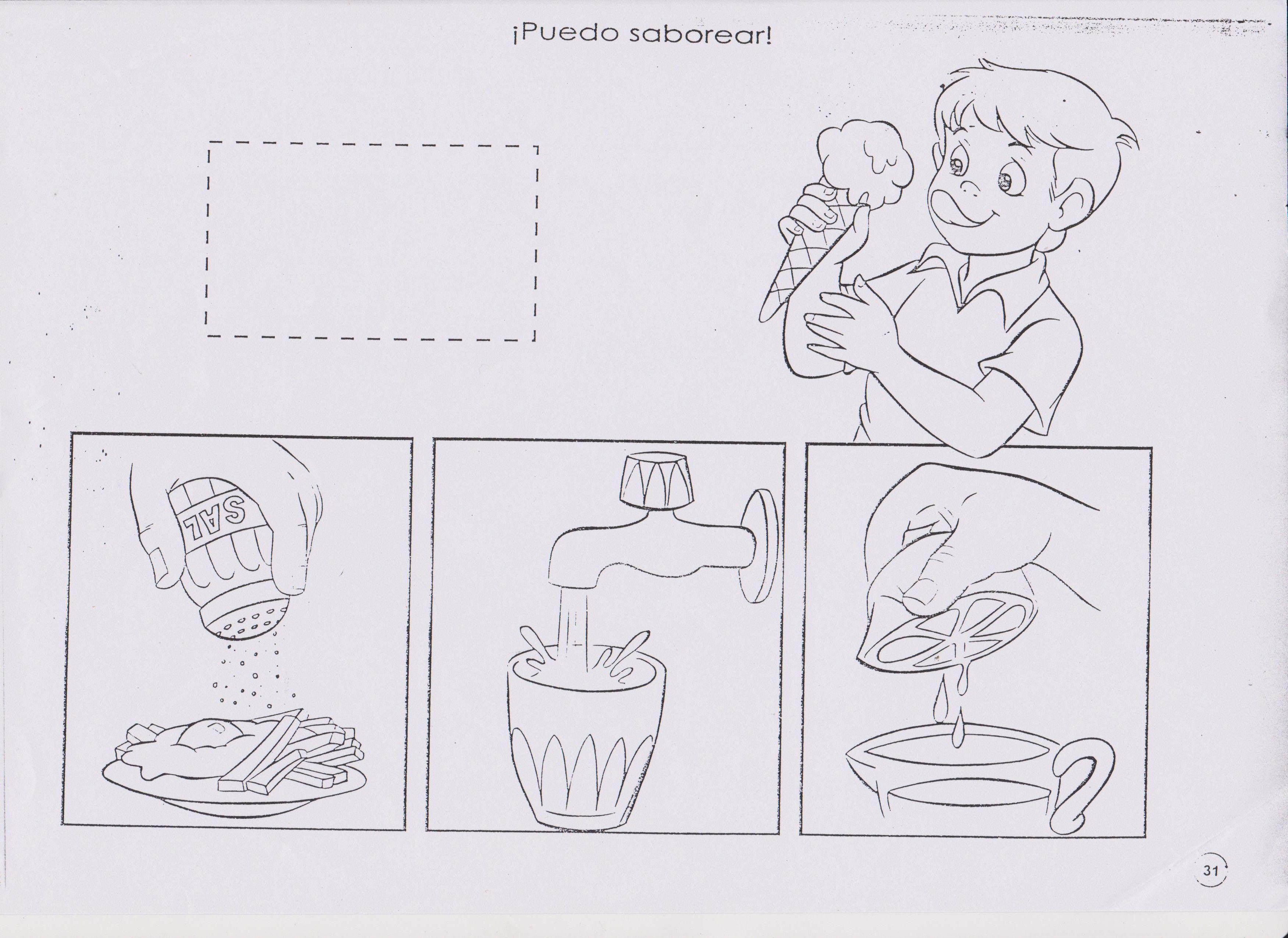 figuras para colorear del sentido del gusto | YOSELIN | Pinterest