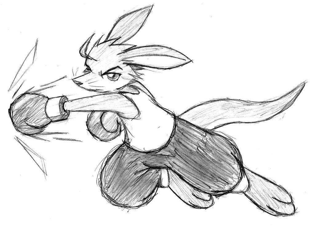 risultati immagini per draw boxer