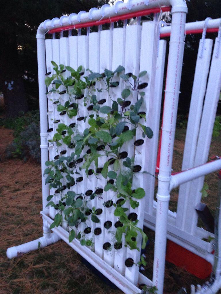 Vertical Hydroponic Farm Hydroponic gardening