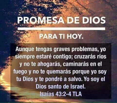 Pin De Vimarie En Palabras De Vida Promesas De Dios Frases Dios Citas Sobre Dios