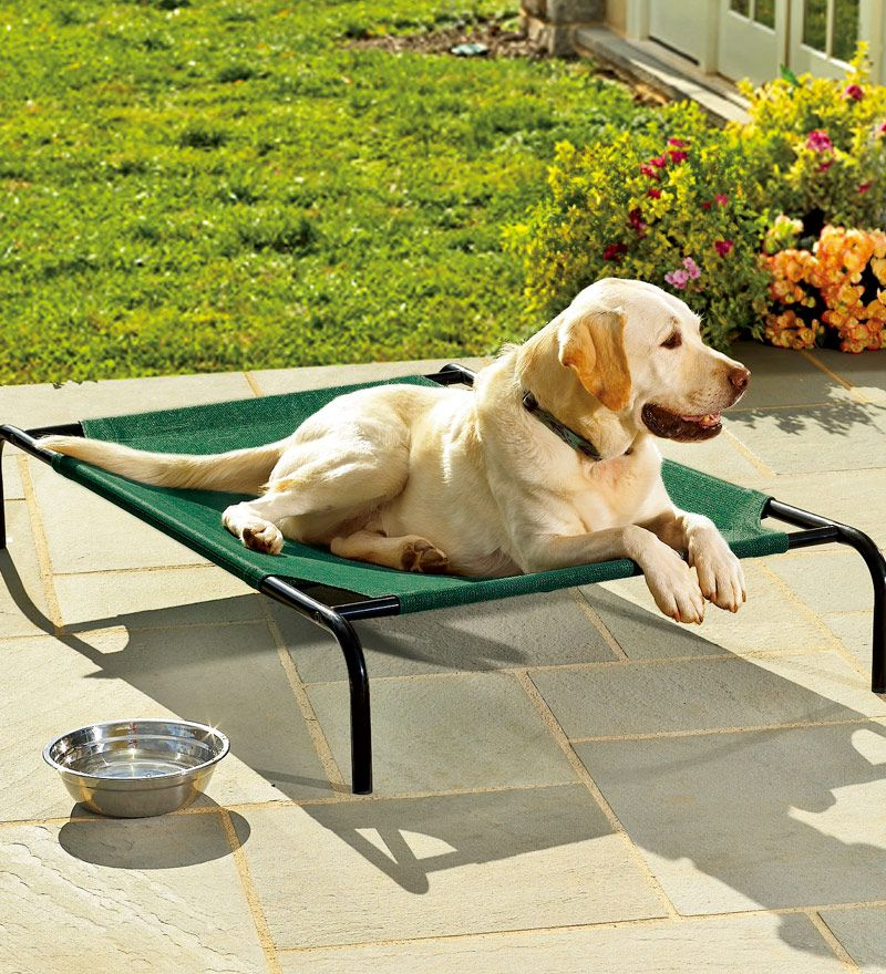 Smart! Her kan hunden ligge godt - selv om altanenes gulv er vådt eller alt for varmt!