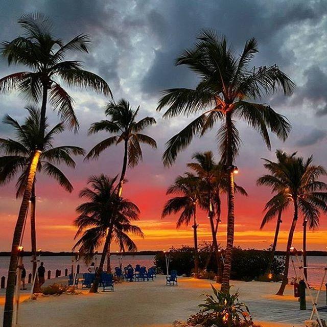 Instagram Photo By Islamorada Times May 8 2016 At 12 03am Utc Visit Florida Islamorada Best Sunset