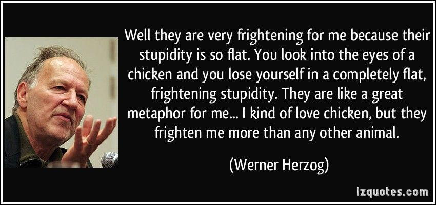 Image result for herzog quotes | Quotes | Picture quotes, Quotes