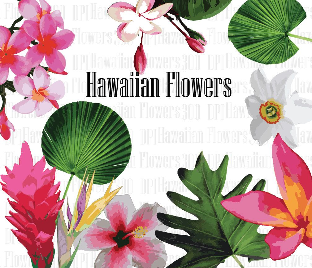 Hawaiian Floral Clip Art High Resolution Graphic Greeting
