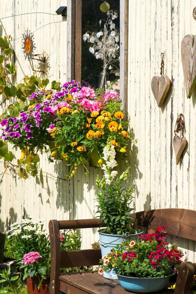 Easy Ideas: 50 Quick Fixes For The Garden This Spring