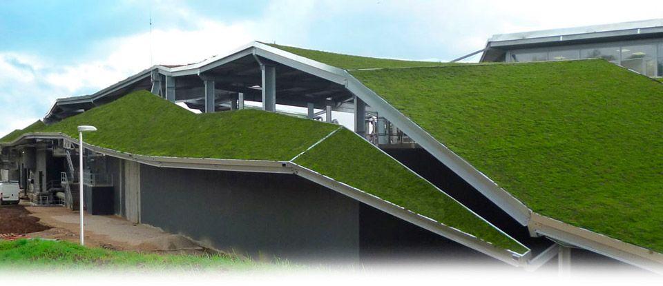slope green roof Google 검색