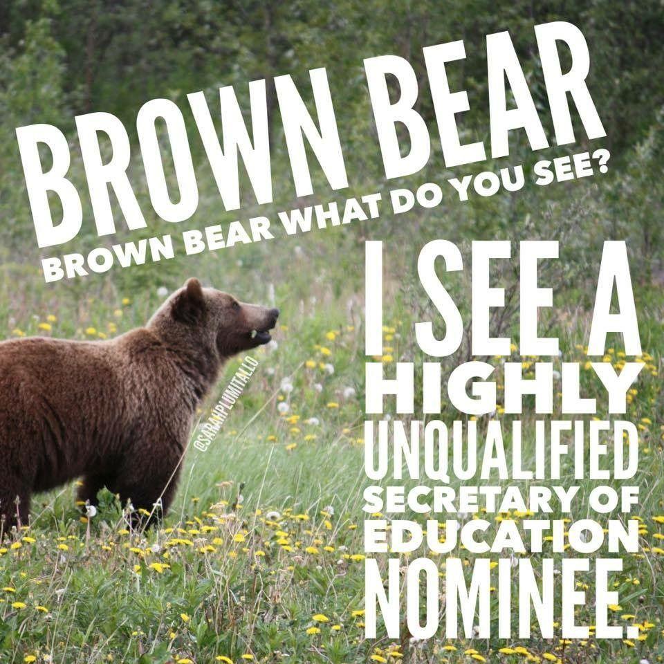 Brown Bear Image By Sarah Beadling On Misc Teacher Humor Bear