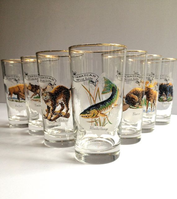 Marvelous Vintage Barware Canadian Wildlife Glassware Wild Animals Canada Outdoors  Nature Set Of Seven