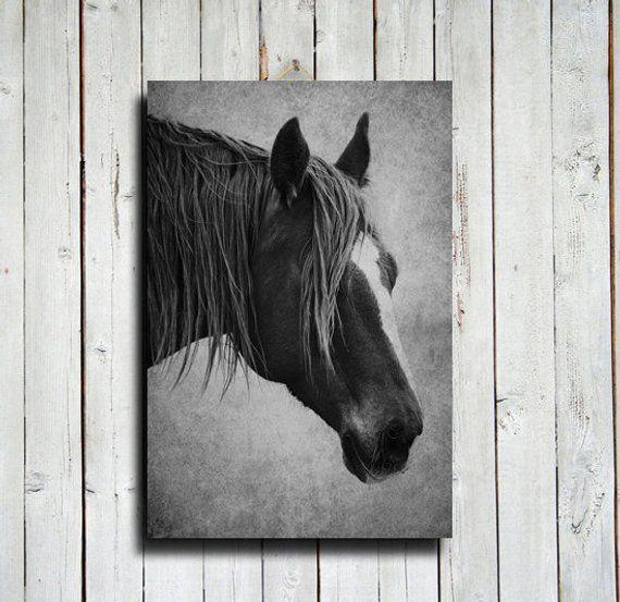 Beautiful Natural White Horse Flowing Mane Modern Art Canvas Print A3