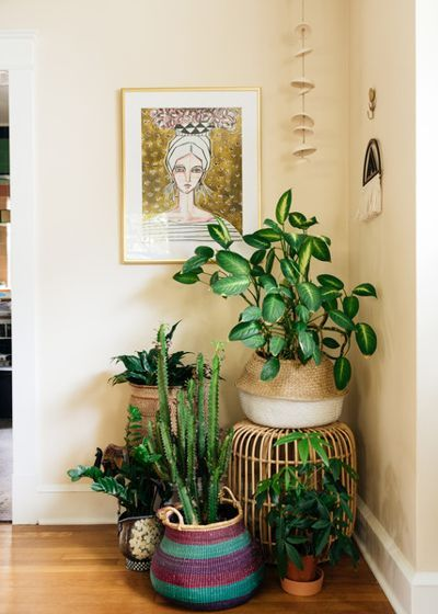 Love This Little Plant Corner Eclectic Living Room By Hado Photo Dining Room Corner Living Room Corner Eclectic Living Room