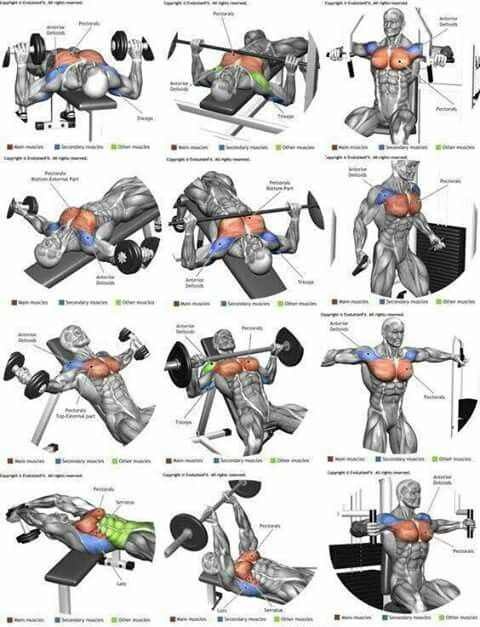 Pin By Tanya Benson On Fitness Brust Training Fitness Workouts