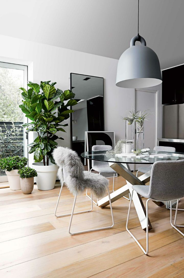modern Scandinavian style apartment with glass round table, large mirror and indoor plant