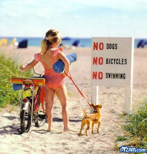 No Dogs. No Bicycles. No Swimming. Everything that's fun seems to be forbidden these days.