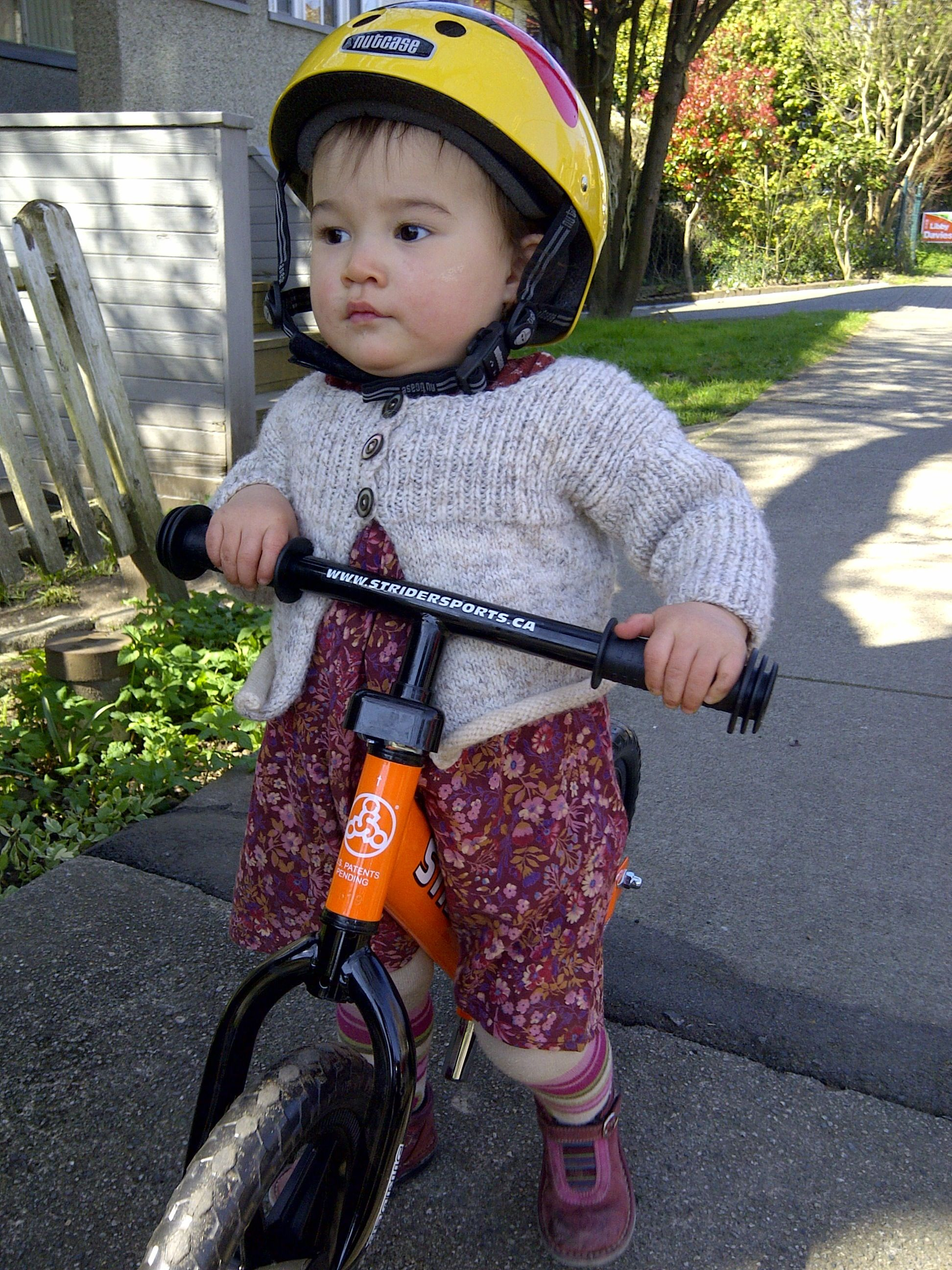 Looking to start you child on a bike?  Run bikes are the new tricycles and training wheels for little tykes.