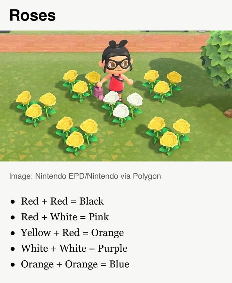 Acnh Flower Hybrid Guide In 2020 Animal Crossing Game New Animal Crossing Animal Crossing Characters