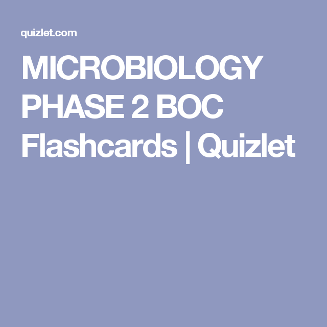 Film Studies Chapter #12 Flashcards | Quizlet | Film/American Cinema