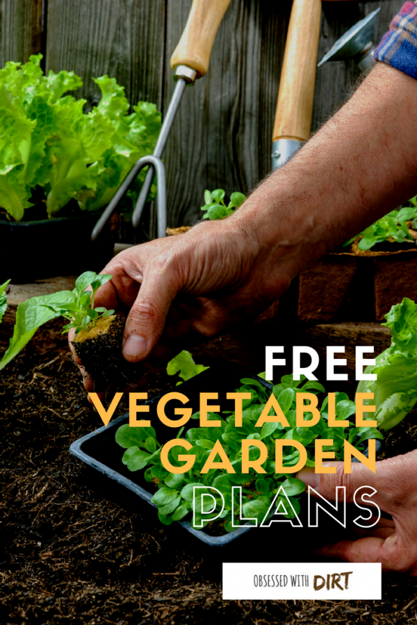 Four Super Easy Vegetable Garden Layouts There S One For Every Size Garden With Garden Layout Vegetable Vegetable Garden Planner Vegetable Garden Layout Plan