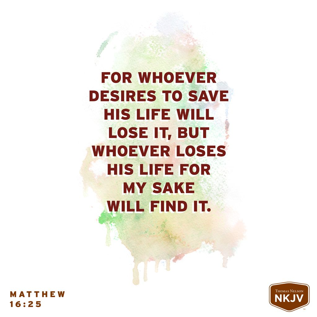 Quotes From The Bible About Life Nkjv Verse Of The Day Matthew 1625  Basic Instructions Before