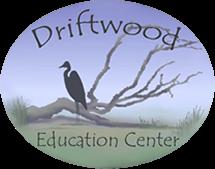 Welcome Driftwood Education Center Education Center Education St Simons Island
