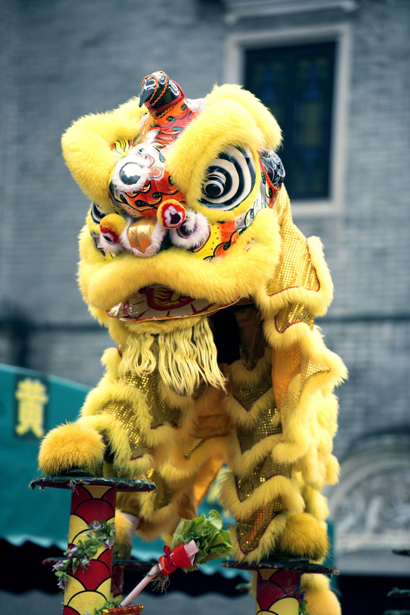 Lion Dance Foshan China By Lili Xue Chinese Lion Dance Lion Dance Lion Dance Costume