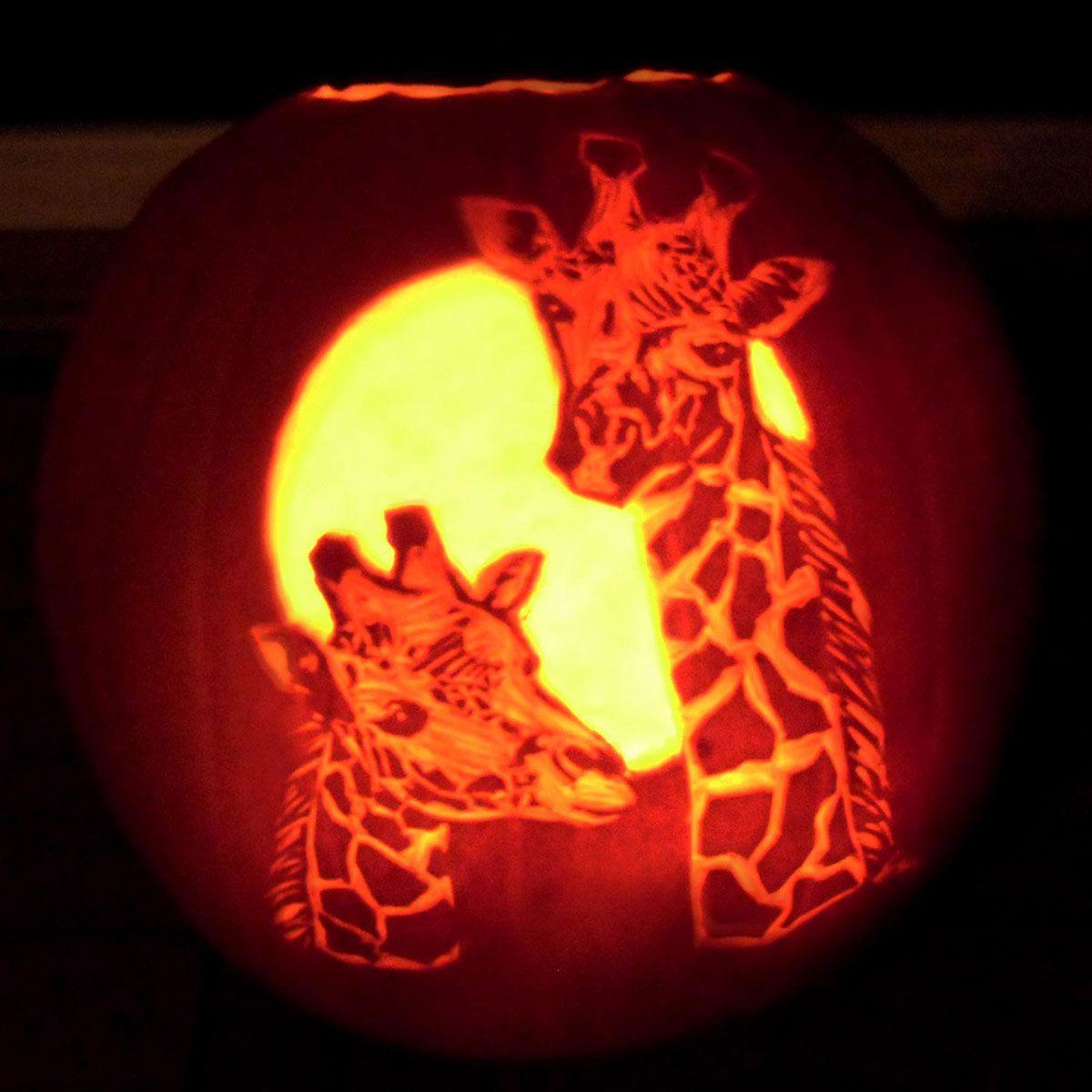 pumpkin template giraffe  pumpkin giraffe | Pumpkin carving templates, Pumpkin carving ...