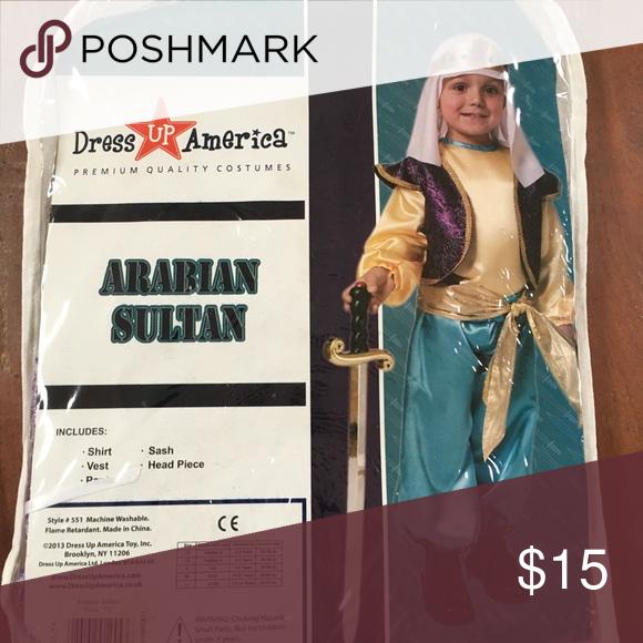 Dress up America Arabian Sultan Costume For Boys