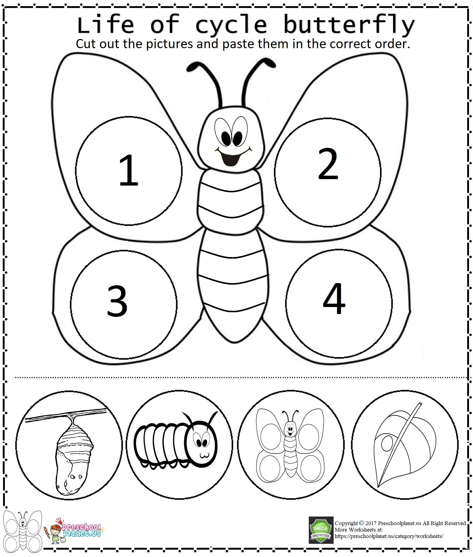 hight resolution of Life Of Cycle Butterfly Worksheet   Butterfly life cycle preschool