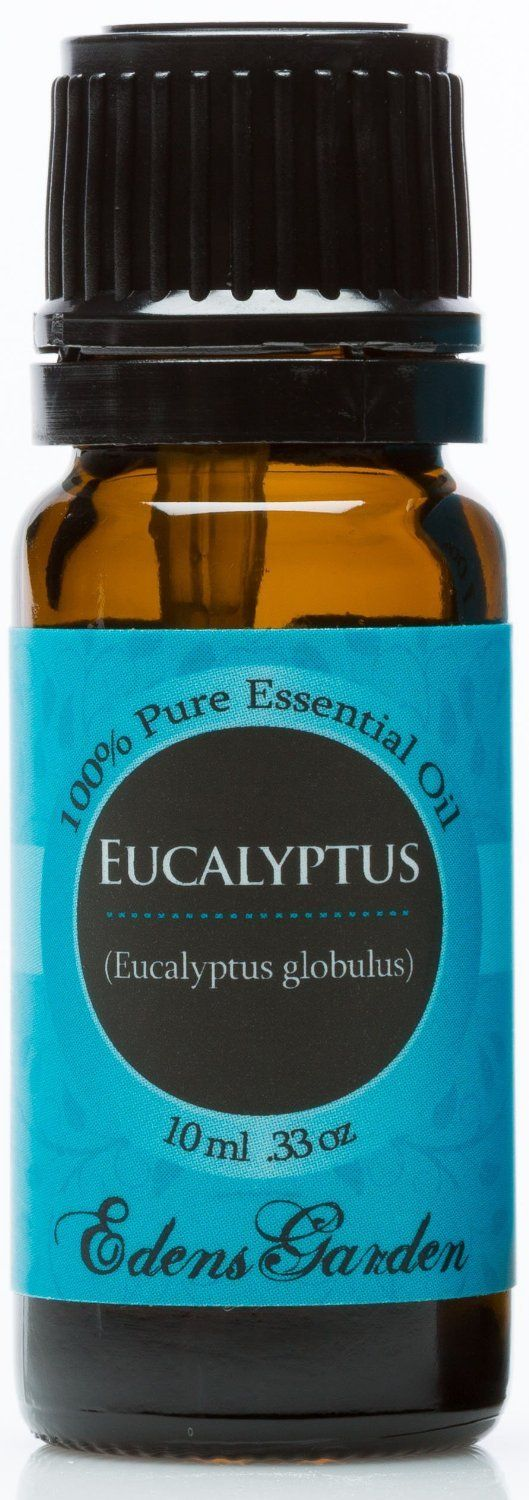 Eucalyptus Essential Oil for Hair and Skin Eucalyptus