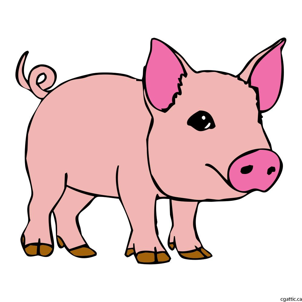 Pig Cartoon Drawing in 4 Steps With Photoshop | поросята | Pinterest ...