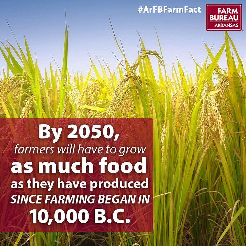 FarmFactFriday022015 Farm facts, Teacher planning, Farmer