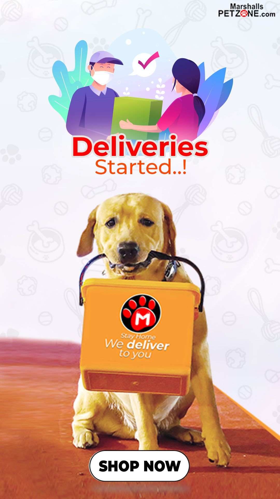 Deliveries Started In 2020 Food Animals Buy Pets Pets