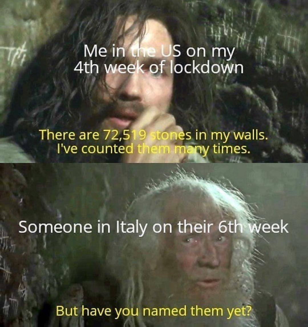 Meme S Quotes Memes Its Memes Laughing Memes Memes Quotes Funnie Memes I Meme Truthful Memes Happy Stupid Funny Memes Funny Relatable Memes Funny Memes
